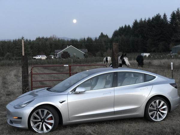 Is Tesla Model 3 Or Model S A Better Choice For Road Trips